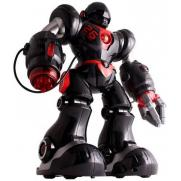 Радиоуправляемый робот Zhorya