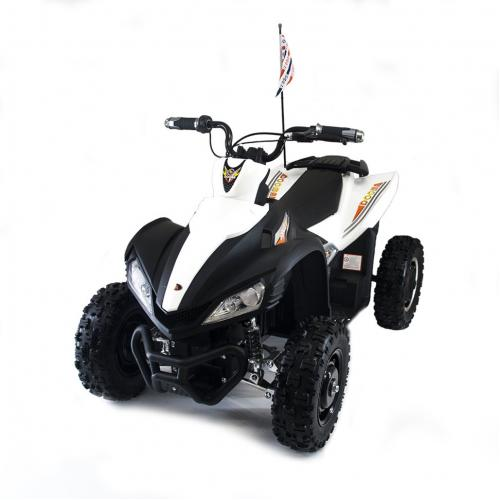 Детский спортивный электроквадроцикл Dongma ATV White Brushless 12V