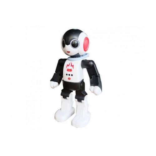 Радиоуправляемый интеллектуальный робот